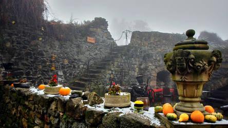 Grodziec Castle In Winter 6 by CitizenFresh