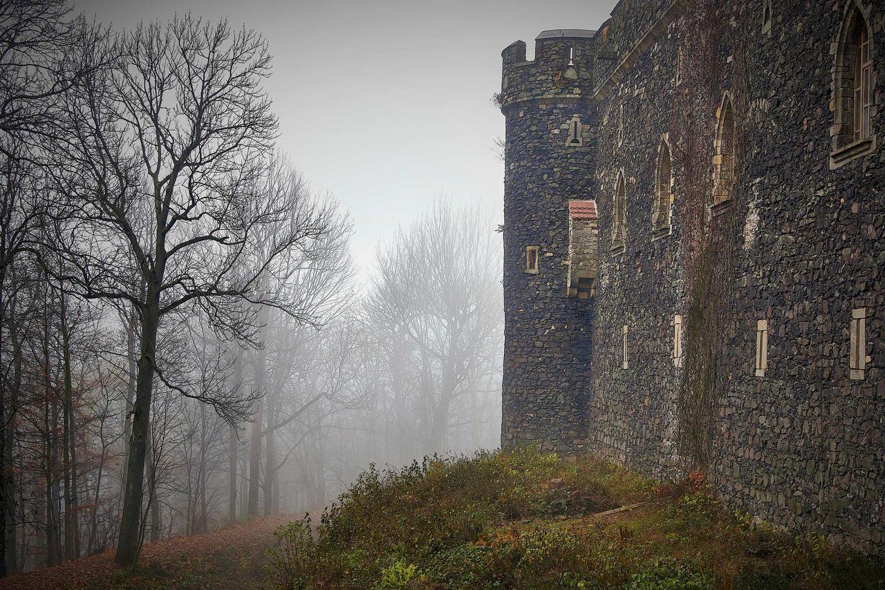 Grodziec Castle In Winter 7 by CitizenFresh