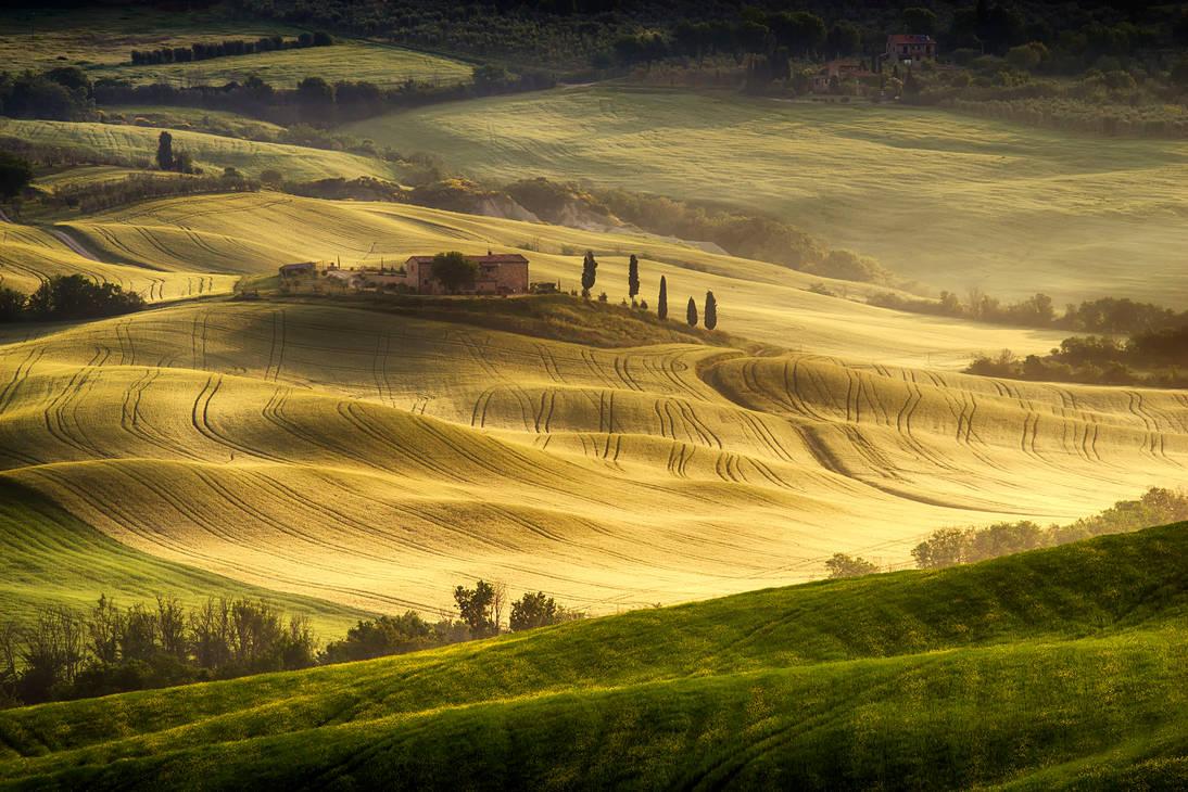 Tuscan  Carpet 2 by CitizenFresh