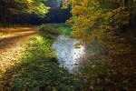 Autumn Impressions 4