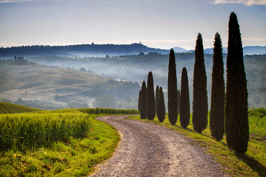 Tuscan Road 4 by CitizenFresh