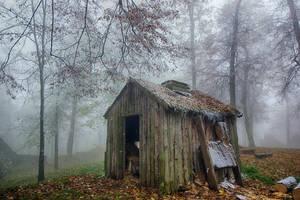 Frosty Day  8 by CitizenFresh