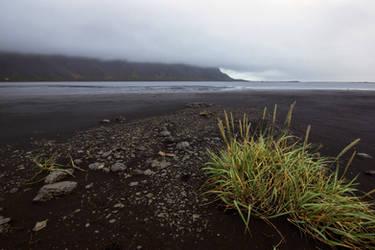 Beautiful Iceland 2 -black beach by CitizenFresh