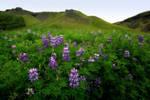 Beautiful Iceland 17