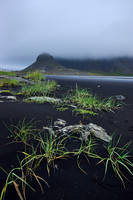 Beautiful Iceland 18 -black beach /outflow/ by CitizenFresh