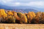 Autumn in Bieszczady - 16