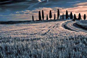 Beautiful  Tuscany by CitizenFresh
