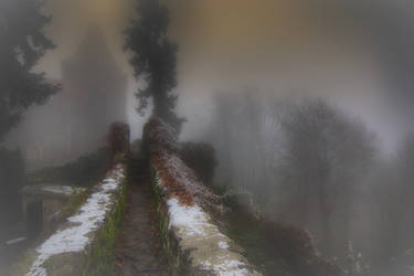 Misty and frozen day 6 by CitizenFresh