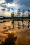 Nature mirror 3