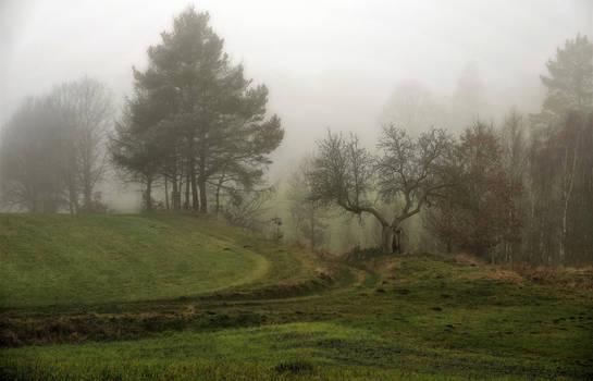 Foggy day December 19