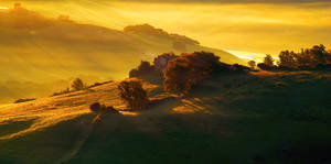Sunrise over the Val d'Orcia valley-Tuscany