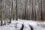 Winter dream 2