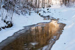 Artistry of winter nature