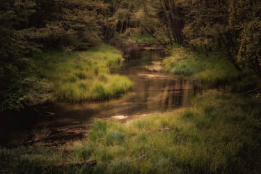 Tranqulity river water