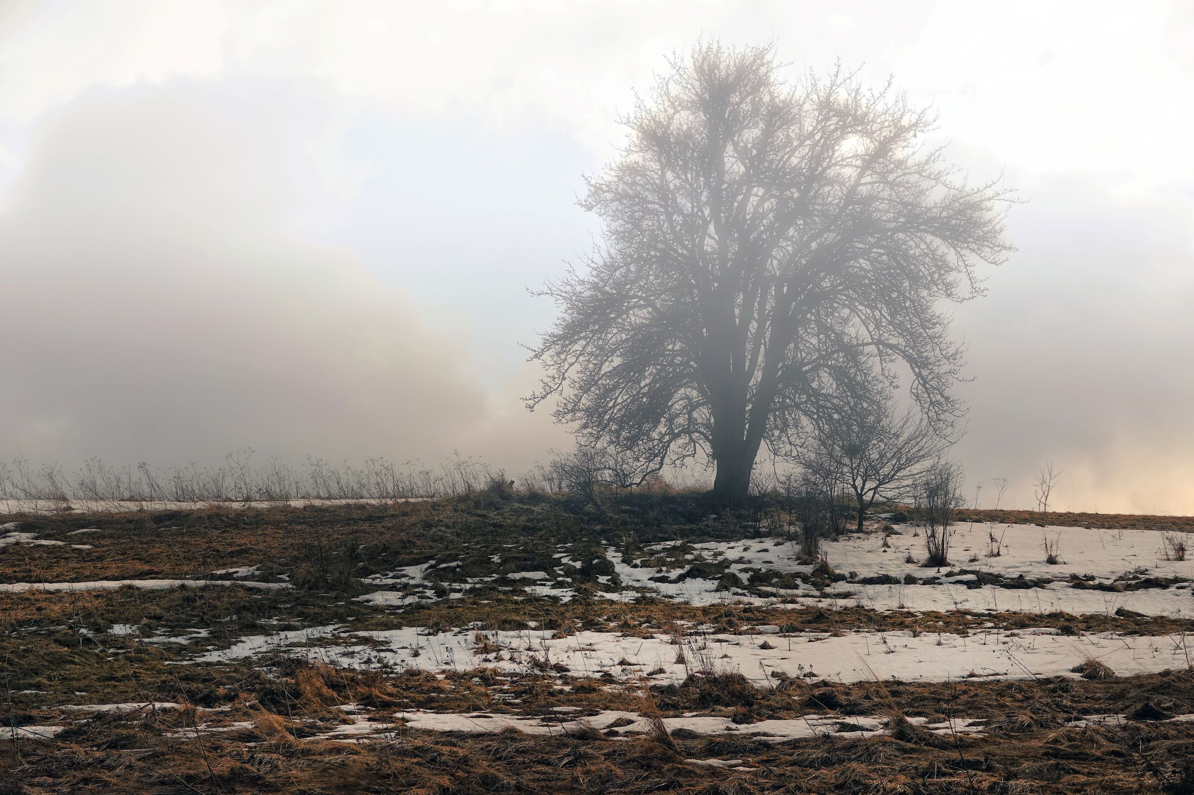 The last breath of winter 8