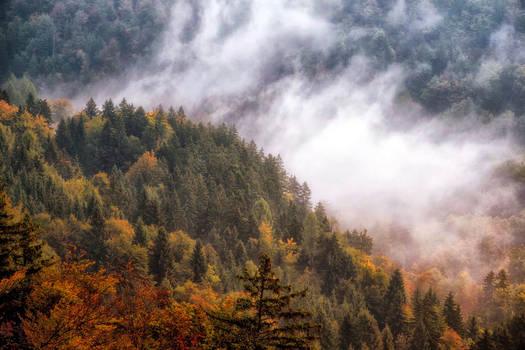 Slovenian autumn