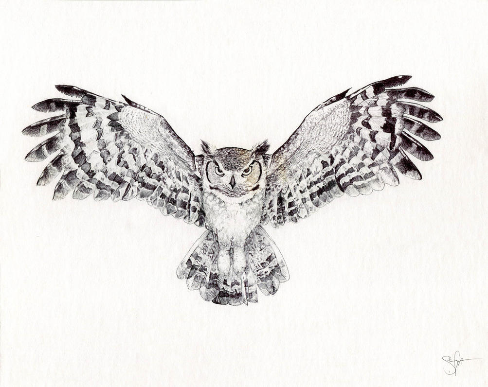 Great Horned Owl By WingedKobraTheThird