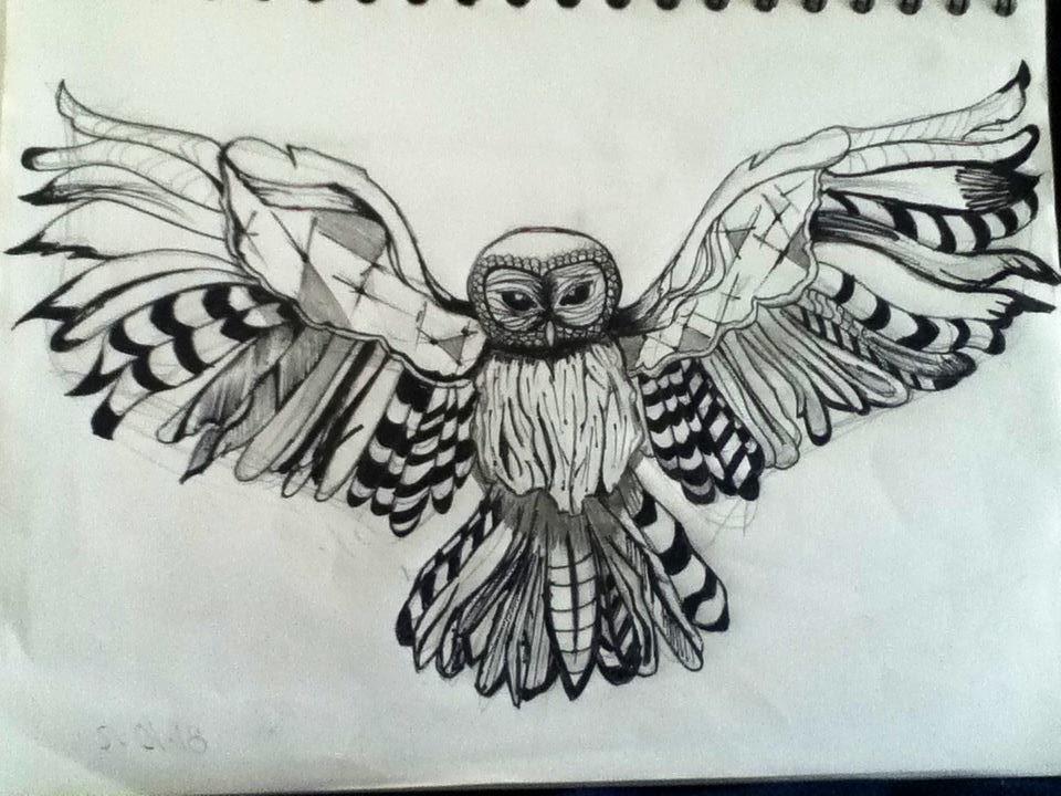 Owl wings amaze you by MHoojaz on DeviantArt