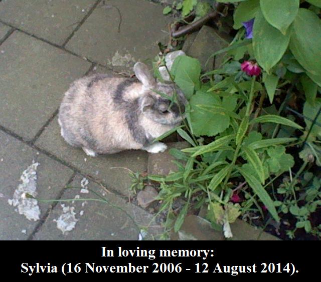 In loving memory: Sylvia. by MarvelscaleMilotic