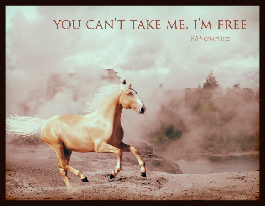 EAS Graphics & Photography. You_can__t_take_me__i__m_free__by_starattraction-d4s3168