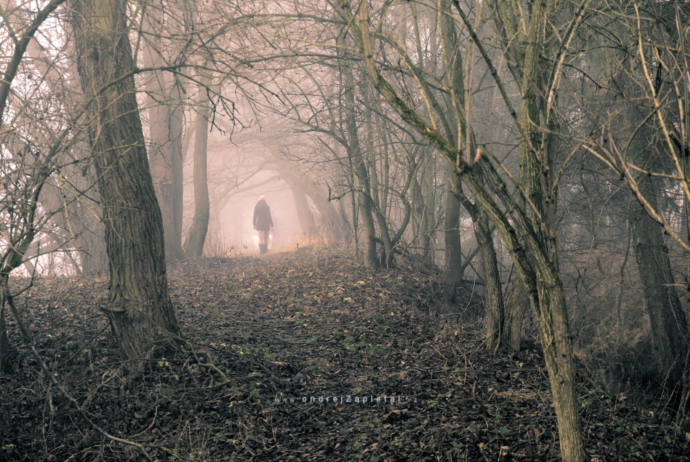 The one in front of me, walking to a mist by ondrejZapletal