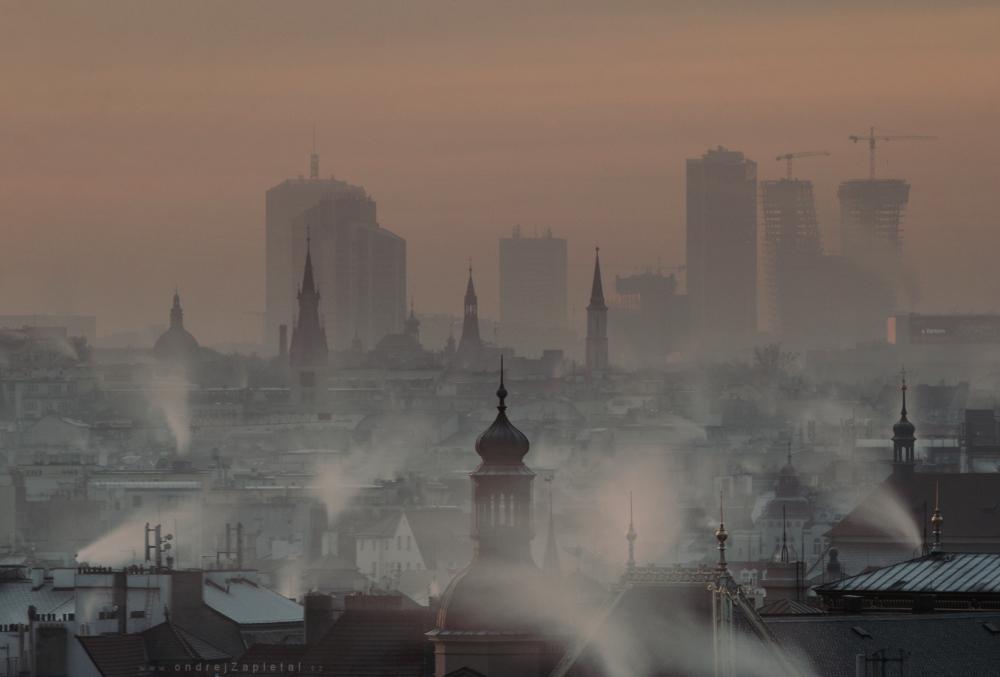 Waking after Freezing Night by ondrejZapletal