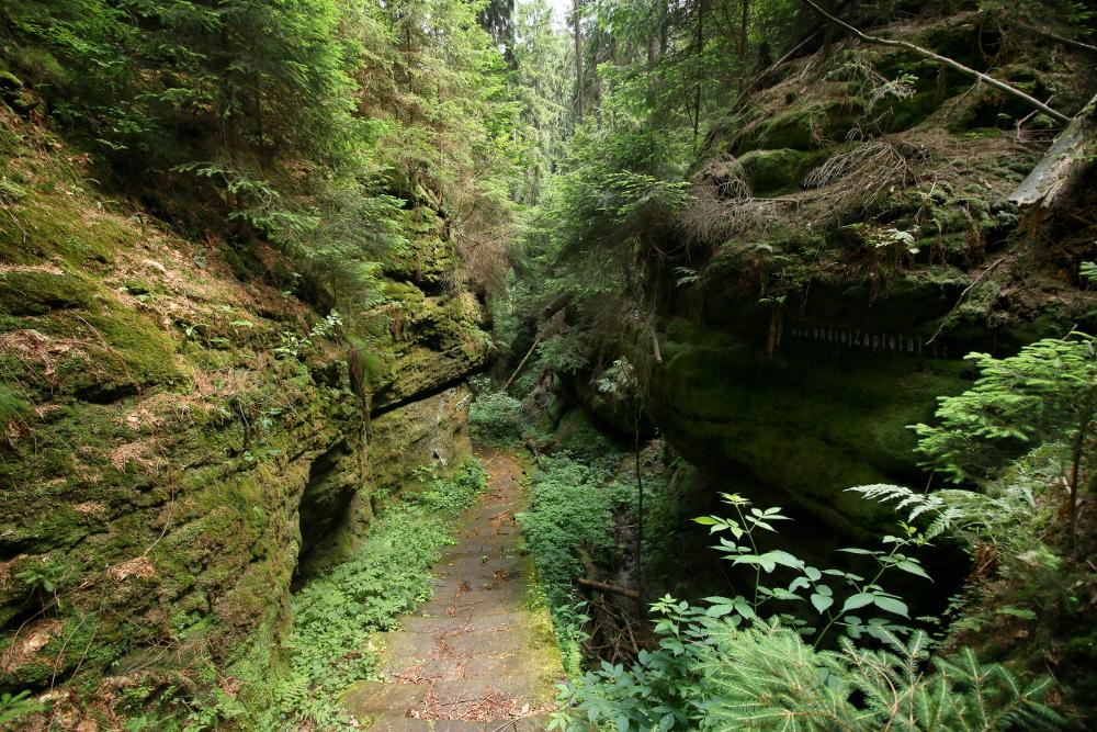 Stone Path by ondrejZapletal