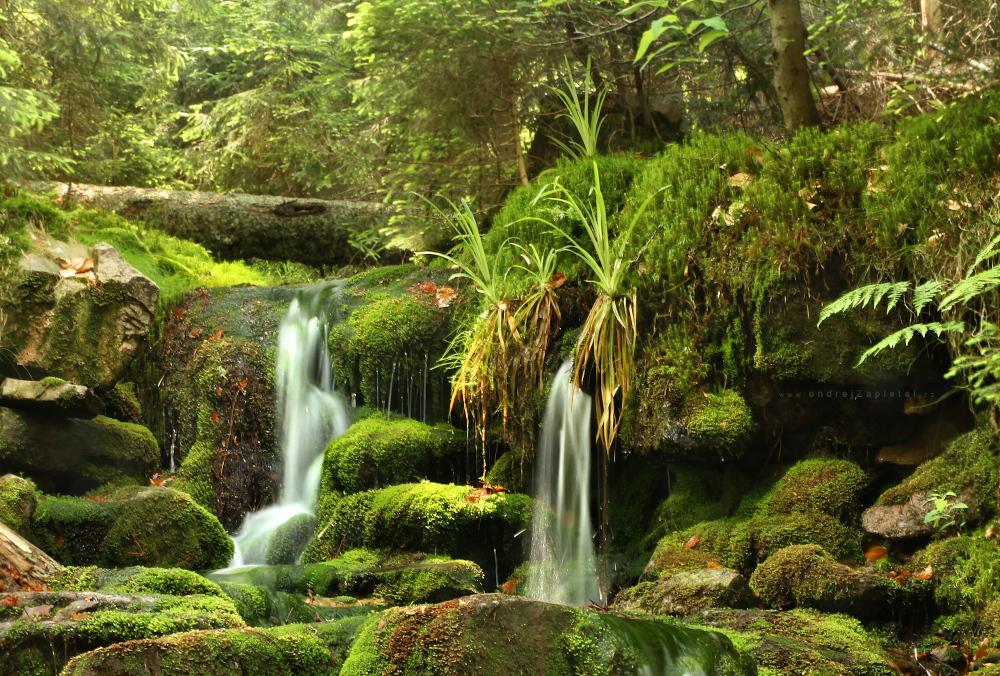Moss Waterfall by ondrejZapletal