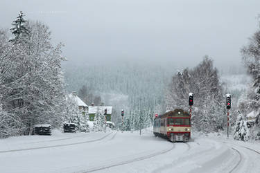Arriving from Snowy Lands by ondrejZapletal
