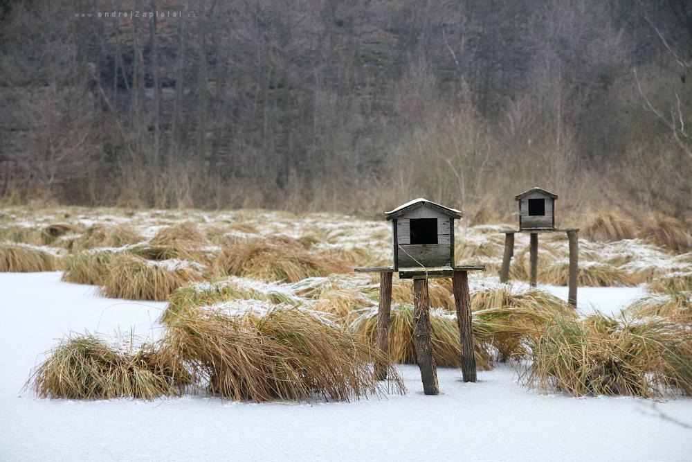 Goose Houses by ondrejZapletal