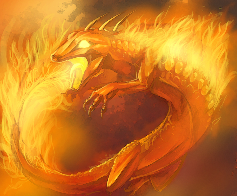 Fire Salamander Fantasy | www.pixshark.com - Images ...