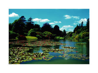 Sheffield Park by bigdavec
