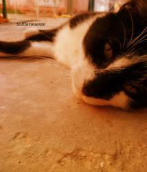 Let me rest by SolDurmiente