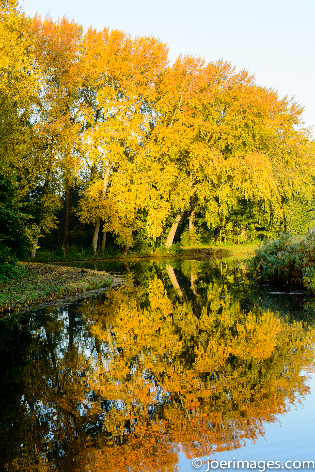 Autumn reflections by joerimages