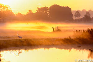 Misty Morning by joerimages