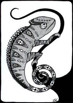 Chameleon 300