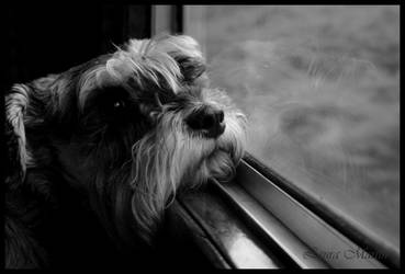 On My Way by Caelitha