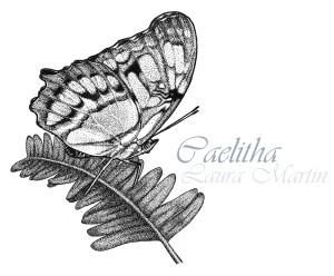 Caelitha's Profile Picture