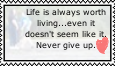 don't give up by Colliequest