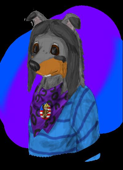 Colliequest's Profile Picture