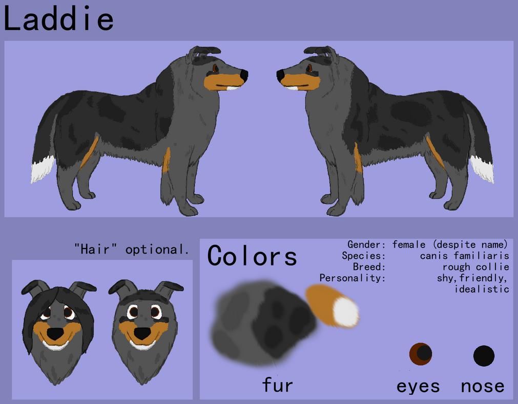 updated Laddie ref by Colliequest