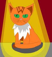 Toby the Orange Munchkin Kitten
