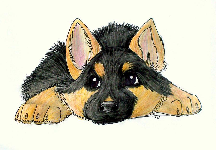 German Shepherd Puppy Xbagel Deviantart