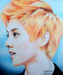 LUHAN (Colour Drawing)