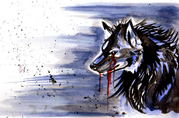 Wolf Sorrow by Lucky978