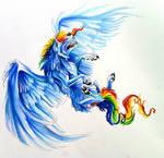 Rainbow Dash?