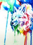 Rainbow Wolf 3