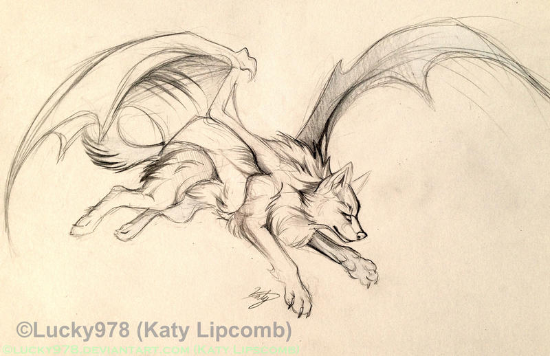 Bat Wolf Design Sketch by Lucky978