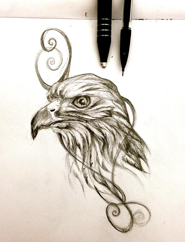 Hawk Design by Lucky978