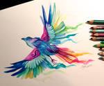 Day 23- Rainbow Bird